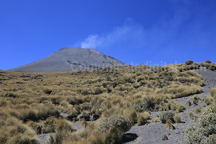 Volcan Don Goyo Fiesta 13