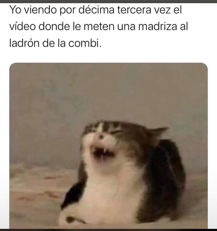 Combi-Madriza-19