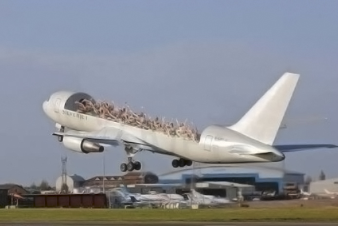 Avion-Presidencial-Rifa-12